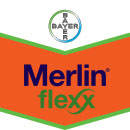 Merlin flexx