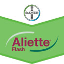 Aliette Flash