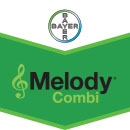 Melody Combi
