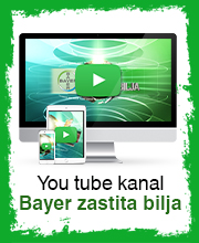 Bayer ZOutube kanal